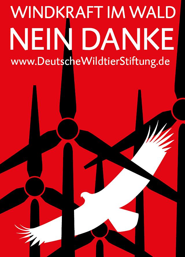 Windkraft Im Wald Nein Danke Deutsche Wildtier Stiftung