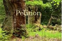 Petition: Stopp der Zerstörung des Reinhardswaldes in Hessen durch Windkraftpläne