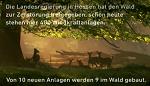 """Kino-Spot der """"Deutschen Wildtier Stiftung"""" ab 13. September in hessischen Kinos"""