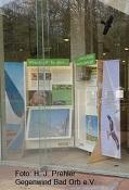 """Gegenwind Bad Orb präsentiert die Wanderausstellung der Deutschen Wildtierstiftung """"Windenergie im Lebensraum Wald"""" bis zum 15. Februar 2021"""